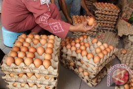 Harga telur melambung di Lhokseumawe