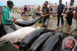 Nelayan Aceh dilatih pengolahan ikan tuna