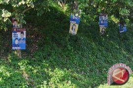 Atribut kampanye caleg banyak dipaku di pohon