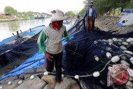 Nelayan enggan melaut akibat cuaca buruk