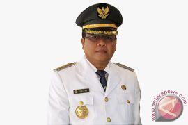 Bupati Aceh Barat curigai kejanggalan temuan ganja