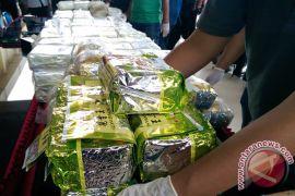 Polisi tangkap komplotan narkoba lintas provinsi