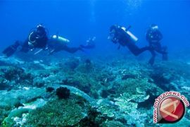 100 tourist guides receive diving, ecotourism certificates