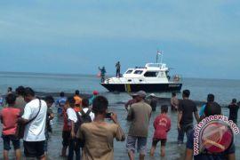 Kawanan paus terdampar di perairan Aceh Besar