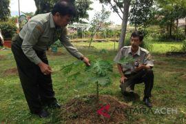 BPTP: Gunakan benih unggul tingkatkan produksi