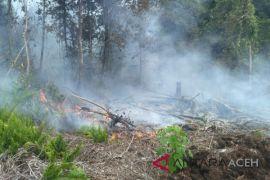 36 hektare kebun sawit terbakar di Nagan Raya