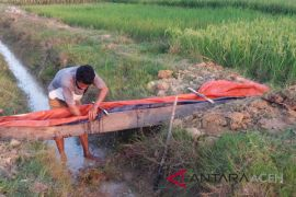 Petani Aceh Utara diimbau patuhi jadwal musim tanam