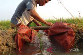 Petani optimalkan pompa air atasi kekeringan