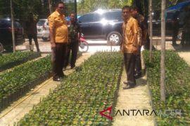 Petani Aceh terpaksa jual bibit bantuan pemerintah