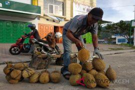 Meulaboh jadi pasar durian lokal
