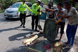 Personil Polres Lhokseumawe tambal jalan berlubang