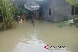 Puluhan rumah masih terendam di Aceh Singkil