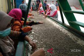 Ekspor kopi Aceh di September 7.525 dolar