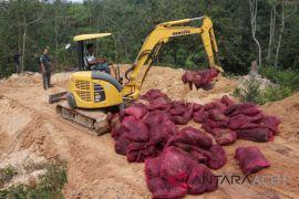 33 ribu Kg bawang seludupan dimusnahkan