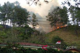 65 hektar lahan terbakar di Bener Meriah