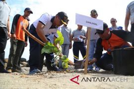 Danlanal Lhokseumawe ajak masyarakat pesisir jaga mangrove