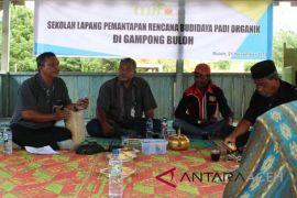 Petani desa Aceh Barat diajarkan bertani padi organik
