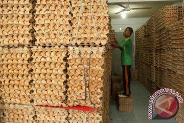 Harga telur ayam di Abdya melambung