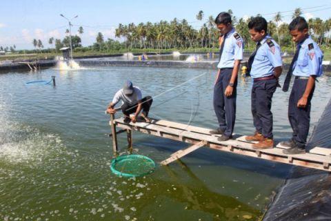 Aceh Barat ajak pemodal kembangkan perikanan budidaya
