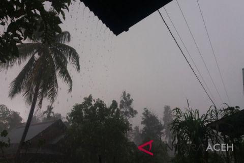 Guyuran hujan di Aceh Utara untungkan petani
