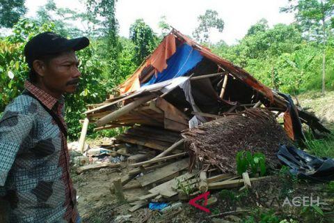 Kawanan gajah rusak rumah warga di Aceh Timur