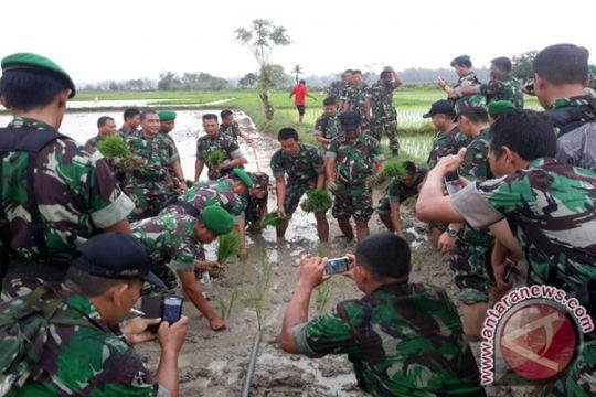TNI kerahkan alsintan bantu petani Aceh Barat