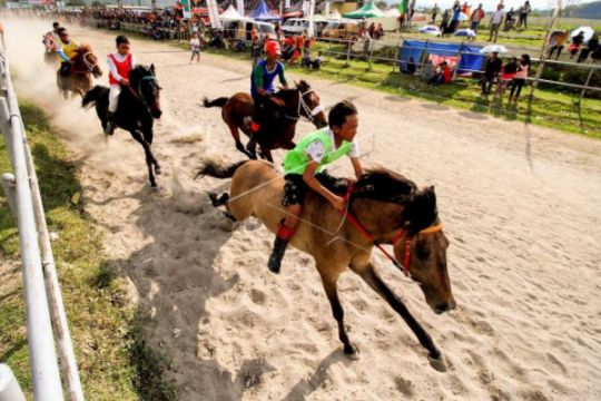 Pacuan Kuda Tradisional Gayo