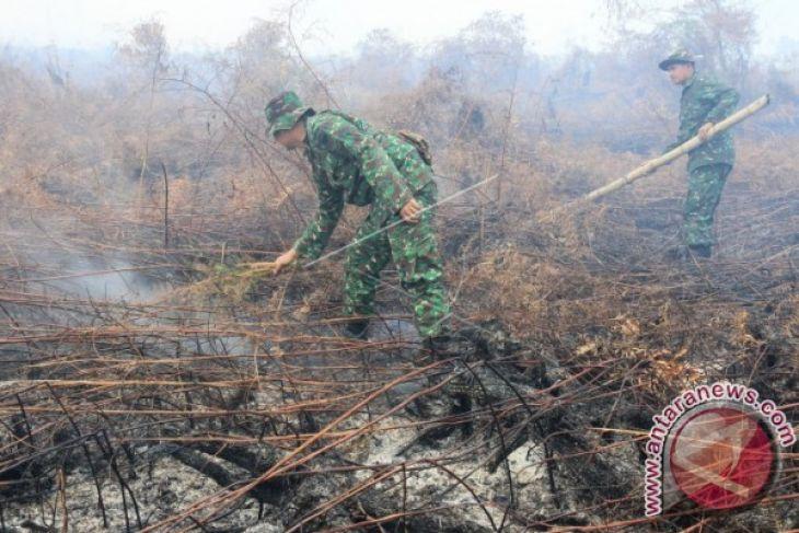 10 hektare lahan gambut terbakar di Nagan Raya
