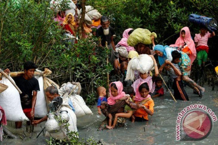 Mereka yang meninggalkan kenyamanan demi Rohingya