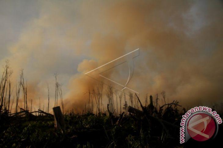 Dua hektare lahan terbakar di Aceh Besar