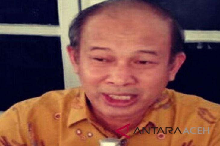 Aceh Tamiang ingin bangun bandara internasional