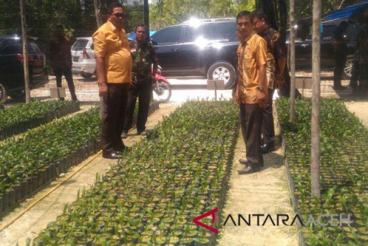 Aceh Barat remajakan 1.110 hektare sawit rakyat