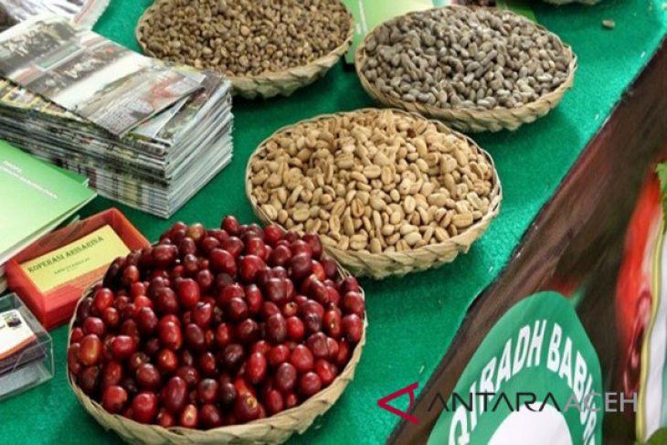 Eskpor kopi gayo Aceh naik 85,71 persen