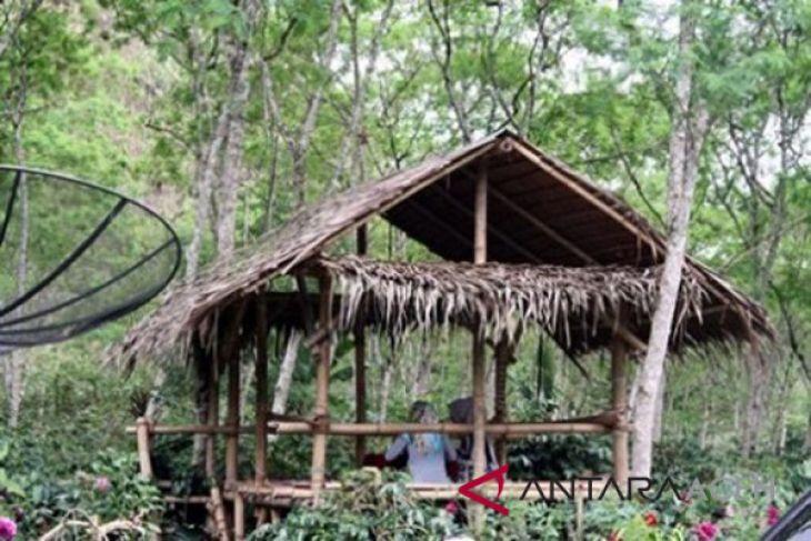 Aceh Tengah padukan objek wisata dan kopi