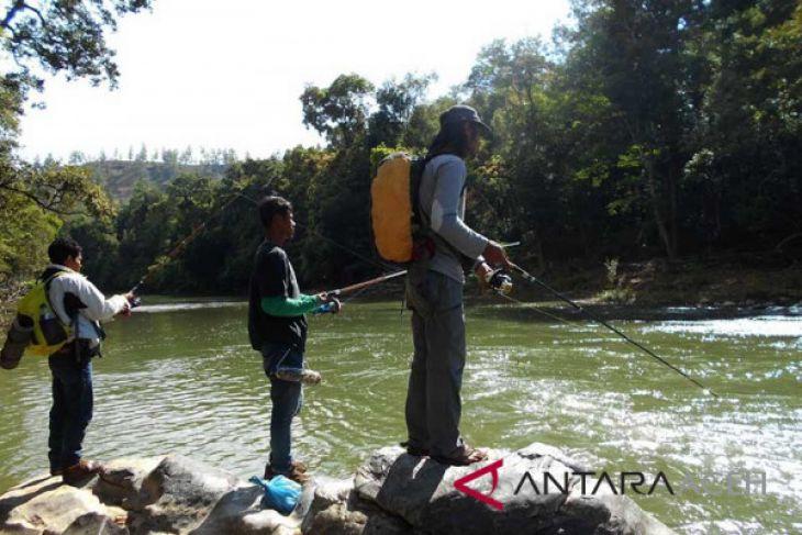 Berburu ikan mahseer di sungai pedalaman Gayo, Aceh Tengah
