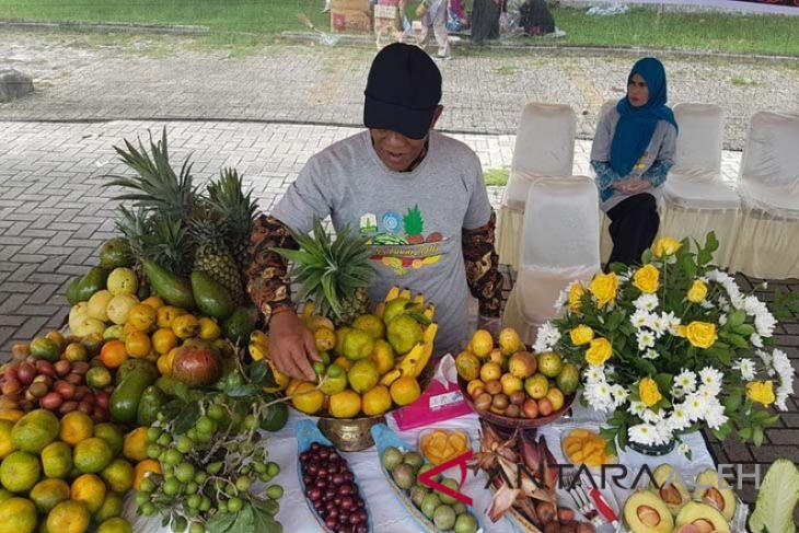 Aceh Tengah juara kontes buah unggul