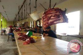 Jelang ramadan harga daging sapi aman