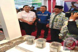 Ekspor Maluku Utara capai 162,23 persen