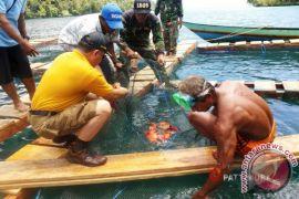 Pemkab diminta arahkan BUMDes kembangkan usaha perikanan