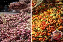 Harga bawang di Ambon diperkirakan naik