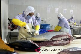 Nilai ekspor Maluku turun