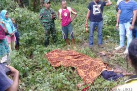 Polda Maluku selidiki pembunuhan suami-istri