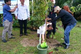 PLN UIP Maluku-Unpatti tanam 1.000 pohon