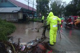 BPBD Ambon siagakan posko layanan pengaduan bencana