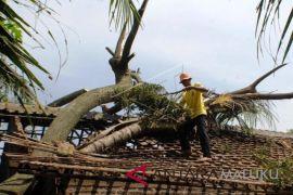 Tekanan rendah utara Australia pengaruhi cuaca Maluku