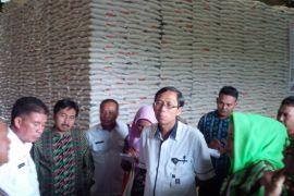 TPID Ternate jamin ketersediaan sembako Maluku Utara