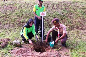 PKK canangkan gerakan perempuan Maluku tanam pohon