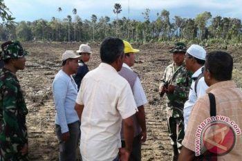 Kodam Pattimura Cetak Sawah 1.719 Hektare
