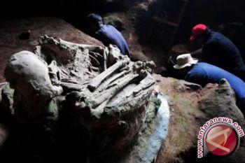 BPCB data lukisan prasejarah di Kisar