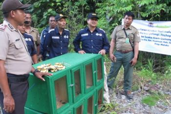 BKSDA Maluku selamatkam 1.007 TSL dilidungi